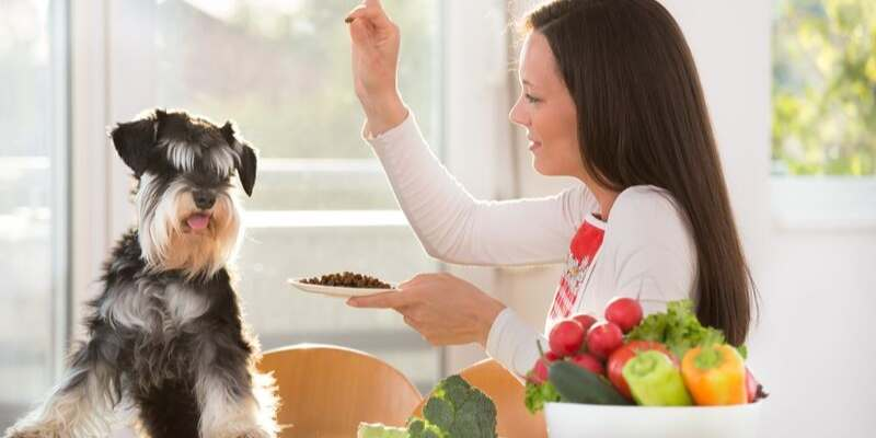Hypoallergenic Dog Food: Pros&Cons